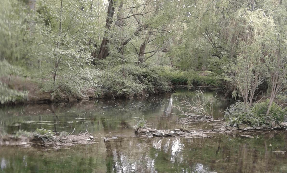 photo-riviere