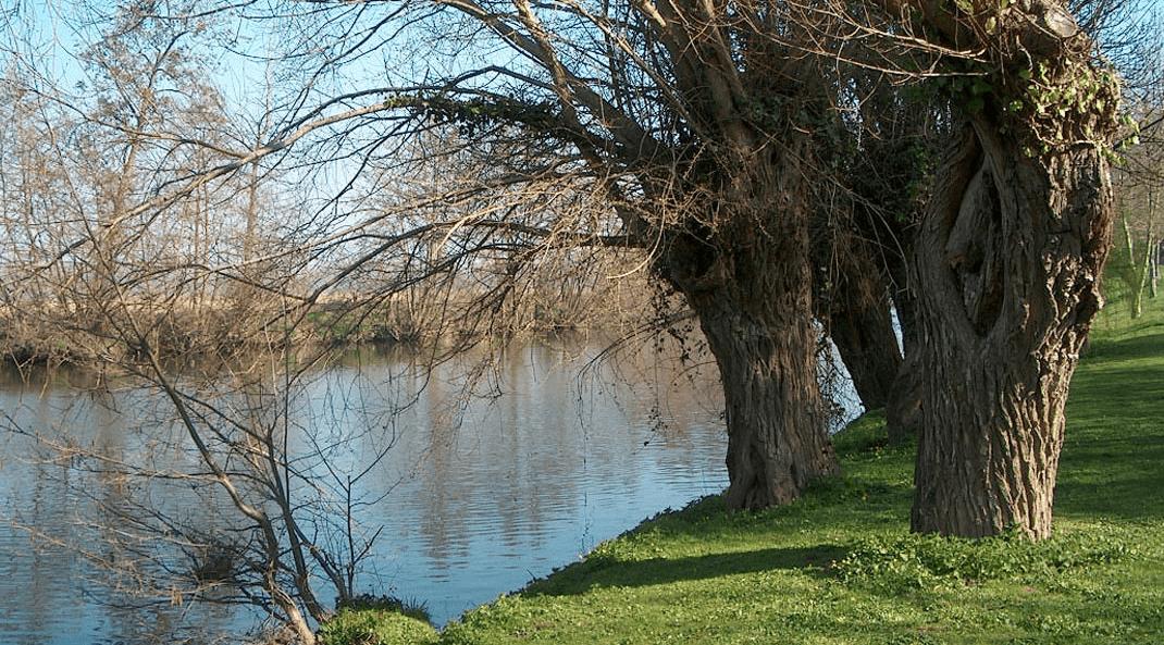 ebc-paysage-riviere